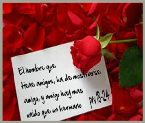 versiculos dela biblia de amor y amistad