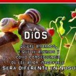 Imágenes Cristianas Con Reflexiones Muy Bonitas