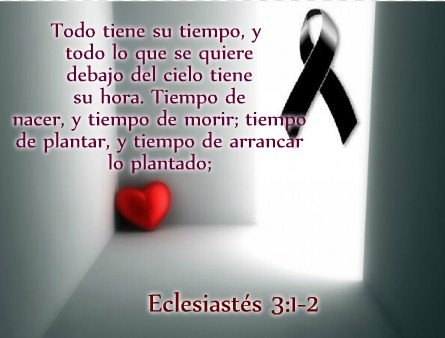 Mensajes De Pésame Cristianos Condolencias Cristianas Amigo