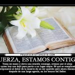 Imágenes Cristianas Para Dar Pésame, Mensajes De Condolencias
