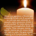 4 Hermosas Tarjetas Y Postales Cristianas De Condolencias