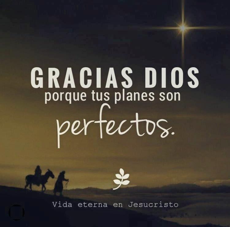 Gracias a Dios porque sus planes son perfectos